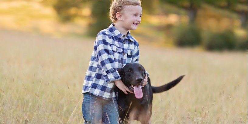 Dog Safety Guidelines for Kids & Families