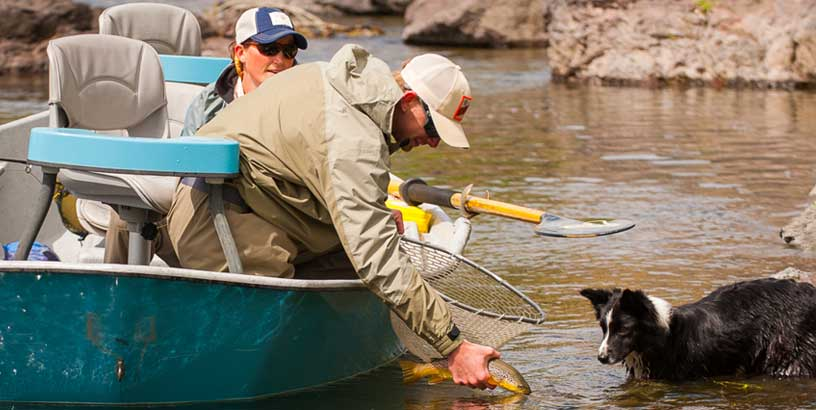 Secrets of Fall Trout Fishing