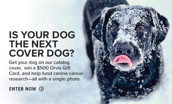 Cover Dog | Enter Now