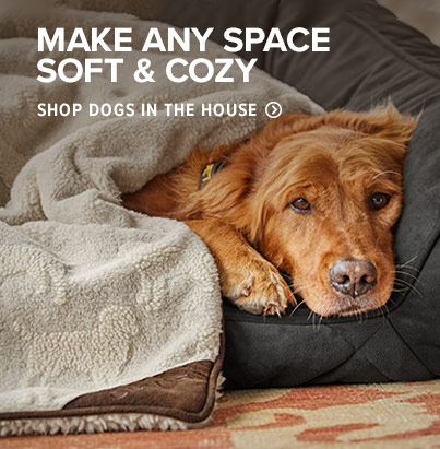 MAKE ANY SPACE SOFT & COZY. Shop Dogs in the House.