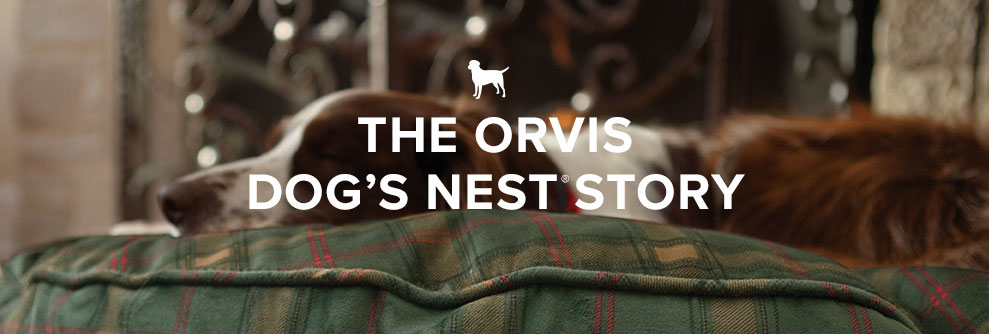 The Orvis Dog's Nest Story
