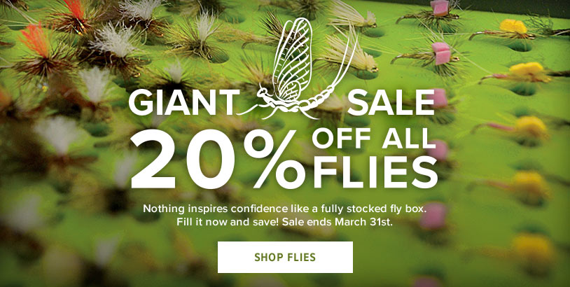 Giant Fly Sale!