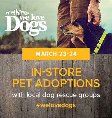 We love dogs Retail store events