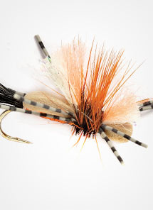 Dry Flies & Emergers