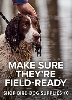 MAKE SURE THEY'RE FIELD-READY From training to travel, find the gear and accessories to make the most of every day, and the dog beds to reward a job well done. Shop Bird Dog Supplies