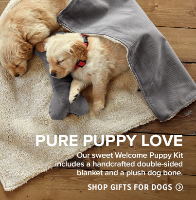 Our sweet Welcome Puppy Kit includes a handcrafted double-sided blanket and a plush dog bone.  Shop Gifts for Dogs