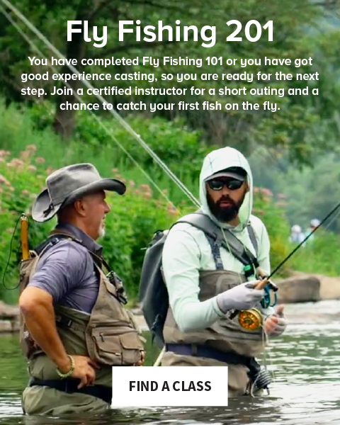 Fly Fishing 201 You have completed Fly Fishing 101 or you have got good experience casting, so you are ready for the next step. Join a certified instructor for a short outing and a chance to catch a fish. | FIND A CLASS