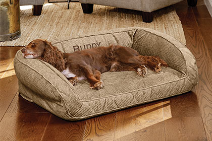 RESTED AND READY FOR THEIR NEXT ADVENTURE Therapeutic Orvis Memory Foam supports muscles, relieves pressure on joints, and improves circulation. Shop Dog Beds