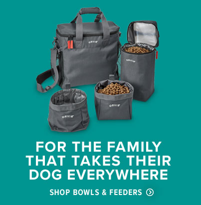 Shop Dog Bowls & Feeders