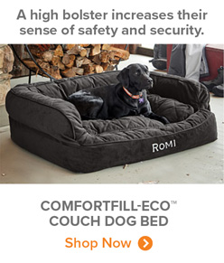 A high bolster increases their sense of safety and security. | COMFORTFILL-ECO™ COUCH DOG BED Shop Now