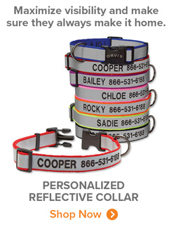 Maximize visibility and make sure they always make it home. | PERSONALIZED REFLECTIVE COLLAR Shop Now