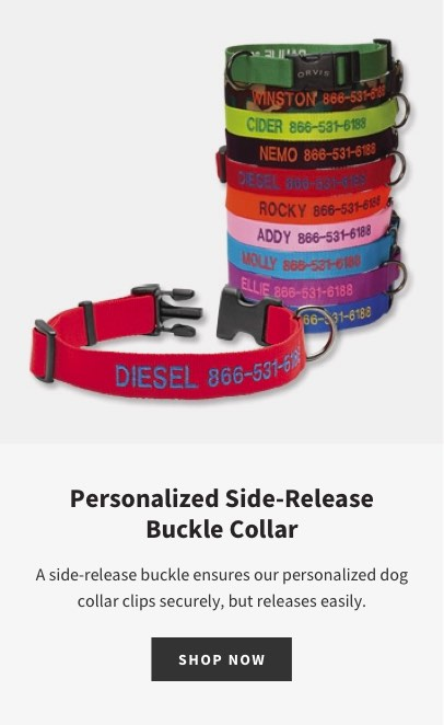 Personalized Side-Release Buckle Collar | A side-release buckle ensures our personalized dog collar clips securely, but releases easily. | SHOP NOW