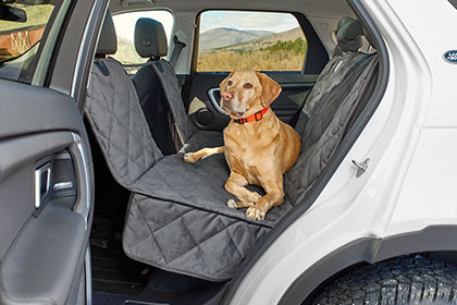 STREAMLINED FOR SIMPLICITY, QUILTED FOR COMFORT Our seat protector installs quickly and features a mesh window to optimize airflow and reduce canine anxiety. Shop Traveling with Dogs