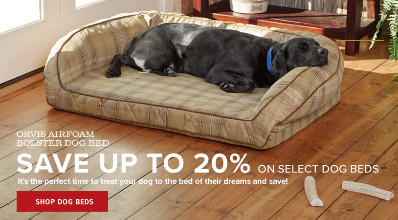 YES, IT IS OKAY IF YOUR DOG'S BED IS BETTER THAN YOURS   A longtime favorite, our Memory Foam Bolster Bed sports a streamlined shape, a plush bolster, and a thick slab of memory foam calibrated for canines. Shop Dog Beds