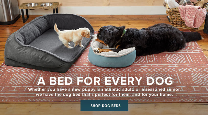 A BED FOR EVERY DOG  Whether you have a new puppy, an athletic adult, or a seasoned senior, we have the dog bed that's perfect for them, and for your home.  Shop Dog Beds