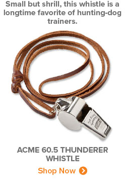 Small but shril, this whistle is a longtime favorite of hunting-dog trainers. | ACME 60.5 THUNDERER WHISTLE Shop Now