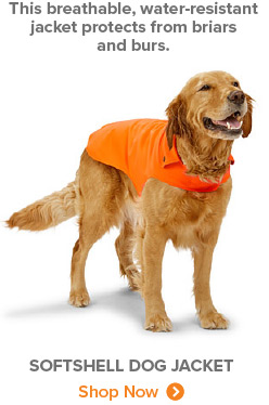 This breathable, water-resistant jacket protects from briars and burs. | SOFTSHELL DOG JACKET Shop Now