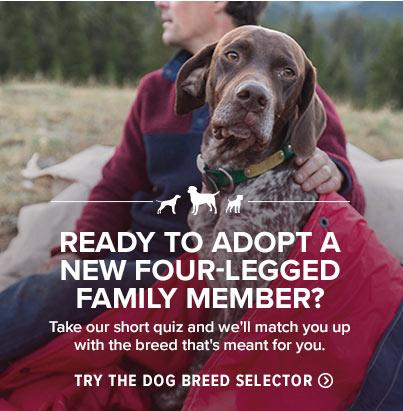 Shop Dog Breed Selector