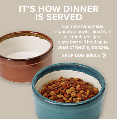 Dog Products -- Orvis