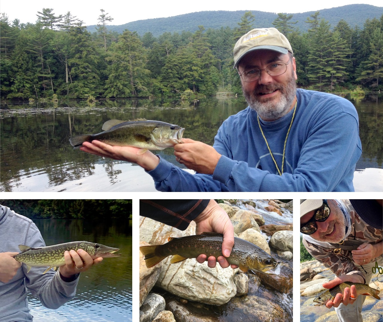 Image of fisherman with largemouth bass, brook trout, brown trout, and chain pickerel.