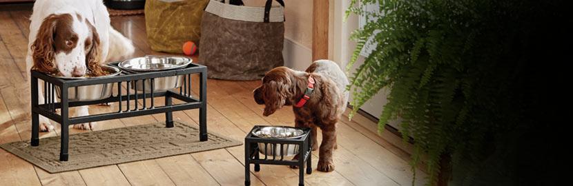 Dog Bowls Amp Dog Food Storage Orvis