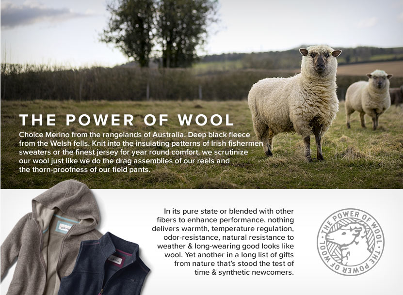 The Power of Wool