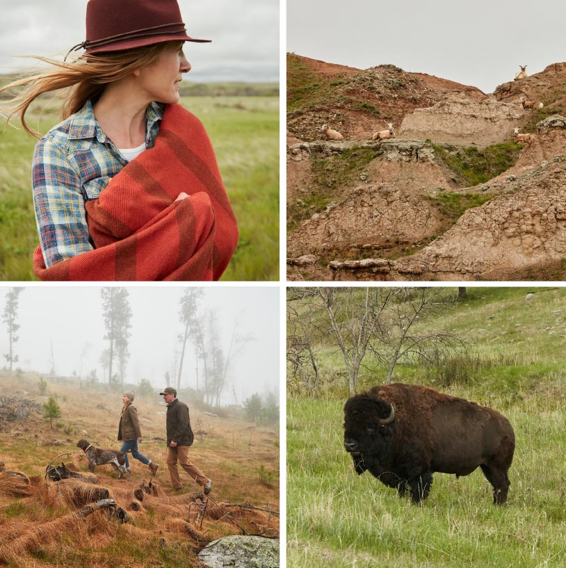 Four image collage of Jillian and her husband with various landscapes and wildlife
