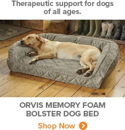 Therapeutic support for dogs of all ages. | Orvis Memory Foam Bolster Dog Bed | Shop Now