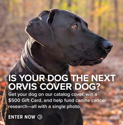 S YOUR DOG THE NEXT ORVIS COVER DOG? Get your dog on our catalog cover, win a $500 Gift Card, and help fund canine cancer research all with a single photo. Enter Now