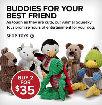 BUDDIES FOR YOUR BEST FRIEND As tough as they are cute, our Animal Squeaky Toys promise hours of entertainment for your dog. Shop Toys
