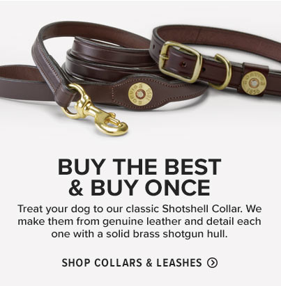 Shop Collars & Leashes