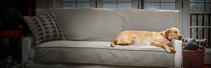 Furniture Protectors Dog Sofa Covers Gates Orvis