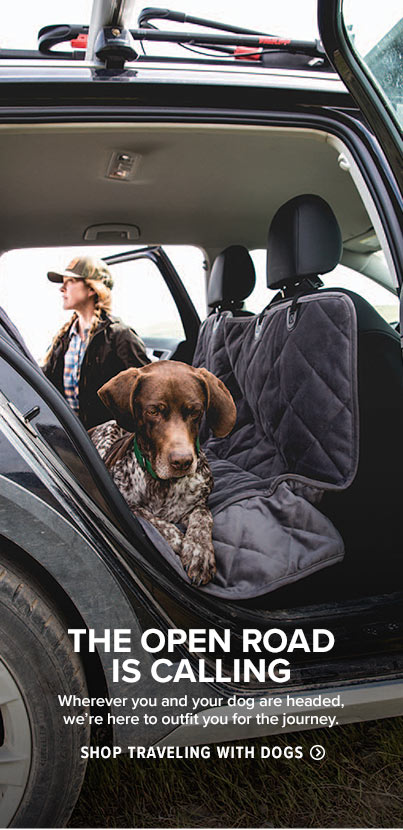 Shop Traveling with Dogs