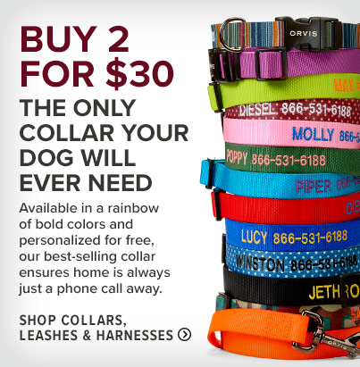 THE ONLY COLLAR YOUR DOG WILL EVER NEED Available in a rainbow of bold colors and personalized for free, our best-selling collar ensures home is always just a phone call away.