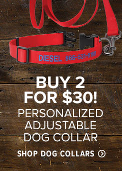Shop Dog Collars