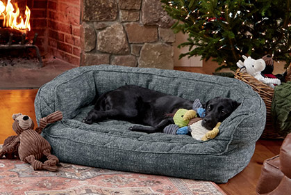 GIVE YOUR DOG A REASON TO GET OFF YOUR COUCH With its stacked bolsters and removable cushion, our Memory Foam Couch Dog Bed is the definition of versatile comfort. Shop Dog Beds