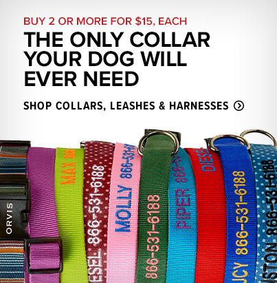 THE ONLY COLLAR YOUR DOG WILL EVER NEED. Shop Collars, Leashes & Harnesses