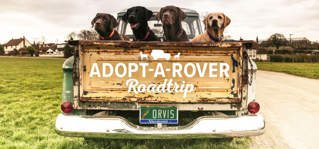 Adopt-A-Rover Roadtrip