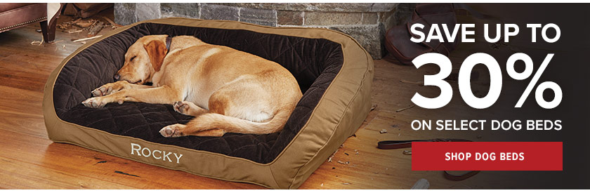 Special Savings on Dog Products