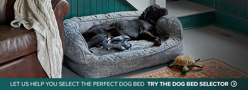 Dog Beds Memory Foam Toughchew