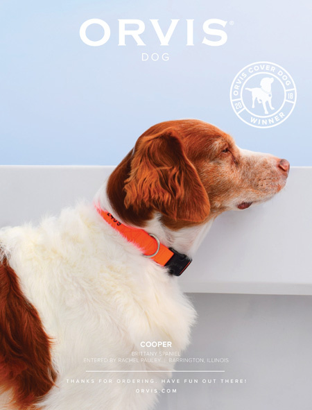 Cover Dog Contest Orvis