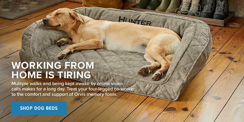 WORKING FROM HOME IS TIRING  Multiple walks and being kept awake by online video calls makes for a long day. Treat your four-legged co-worker to the comfort and support of Orvis memory foam.  Shop Dog Beds