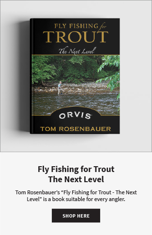 Fly Fishing for Trout The Next Level Tom Rosenbauer's Fly Fishing for Trout - The Next Level is a book suitable for every angler.  |  Shop Now