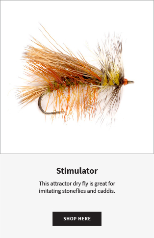 Stimulator This attractor dry fly is great for imitating stoneflies and caddis. |  Shop Now
