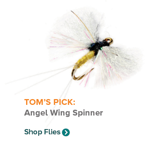 TOM'S PICK: Angel Wing Spinner | Shop Fly Reels