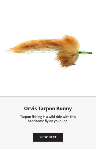 Orvis Tarpon Bunny Tarpon fishing is a wild ride with this handsome fly on your line.  |  Shop Now