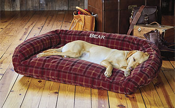 A bolster dog bed covered in ToughChew® nylon can withstand even the most determined chewers.