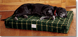 Therapeutic Dog Nest