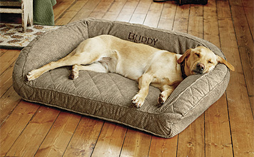Our memory foam bolster dog bed allows your companion to relax in superb luxury.