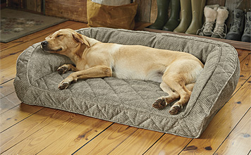 The Orvis Memory Foam Bolster Dog Bed allows your companion to relax in superb luxury.